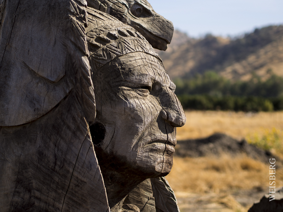 indian wood sculpture near sequoia national forest