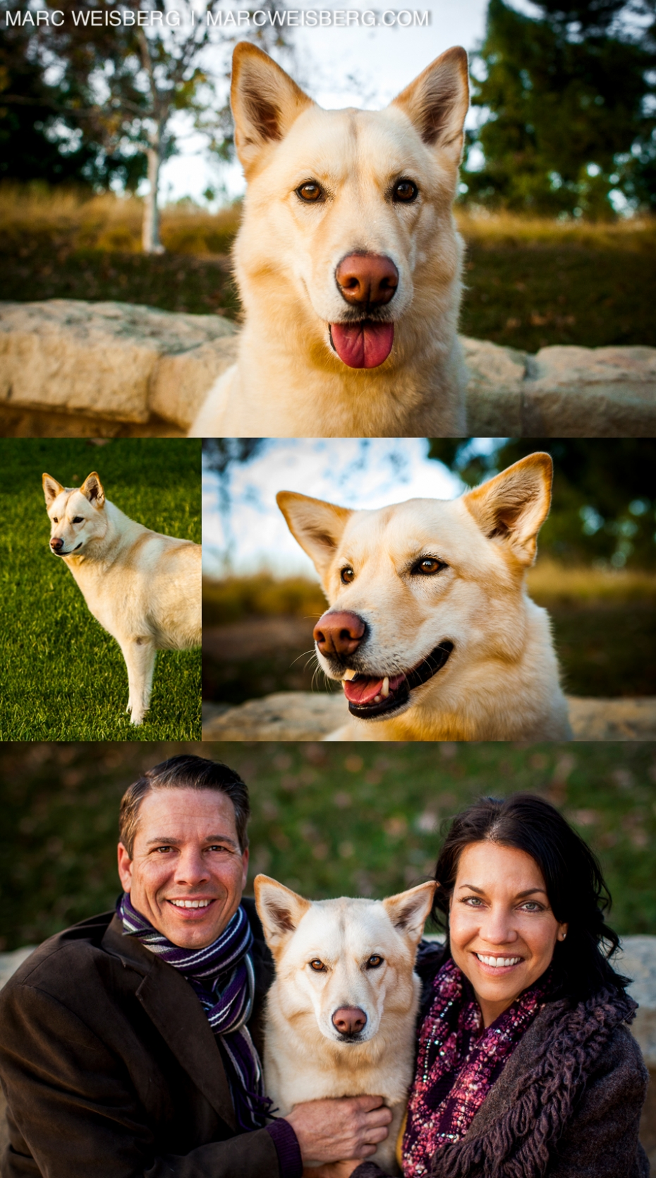 outdoor family portrait irvine photographer