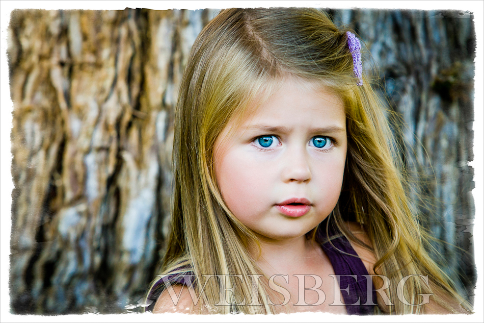 orange county children's portrait photographer