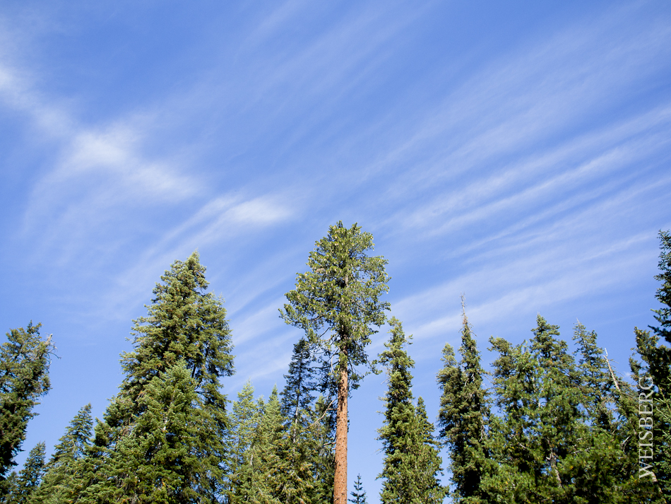 Sky and wispy clouds at Dorst campgrounds, Sequoia National Forest.