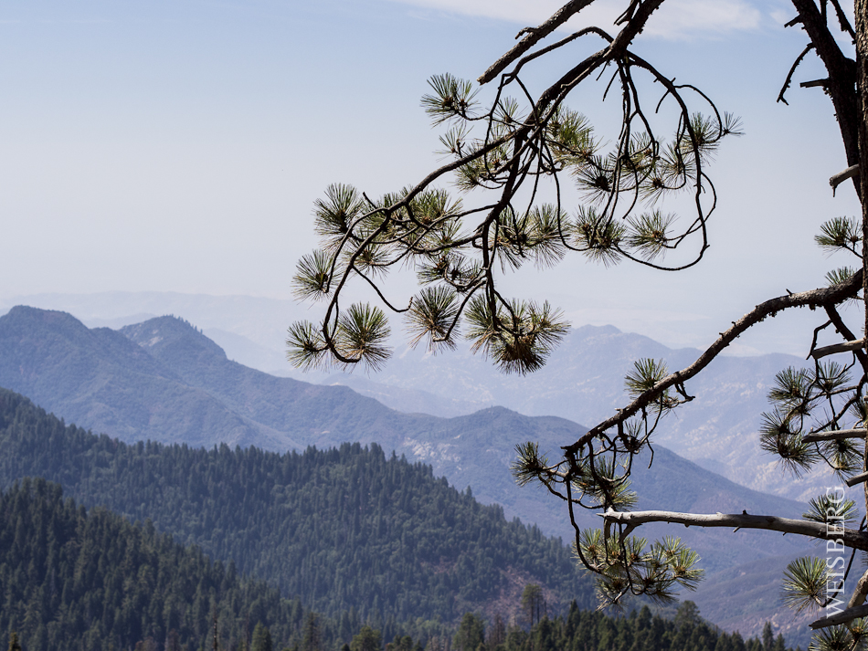 Overlook of Kings Canyon.