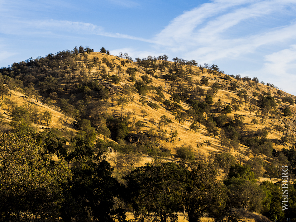 Long shadows on the hills just outside Sequoia National Park, Route 180 South.
