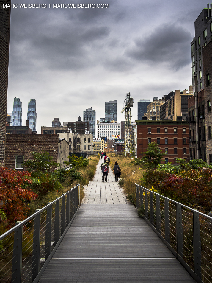 nyc high line pictures