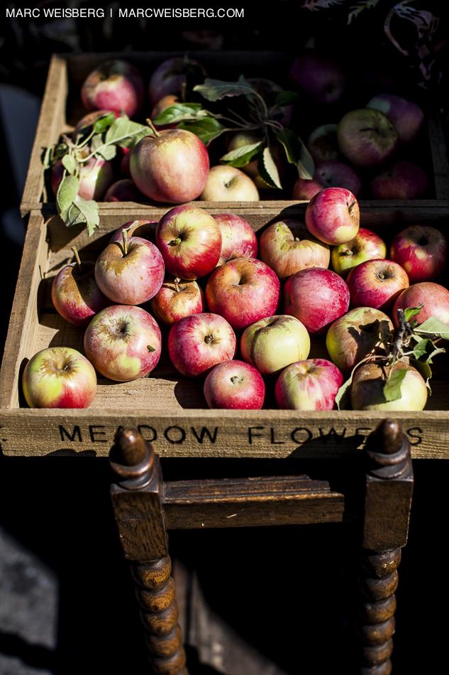 apples open air market food photographer