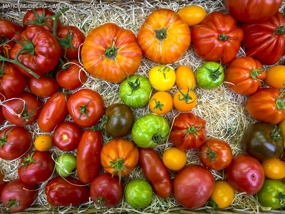 colorful tomates, paris outdoor market, food photographer