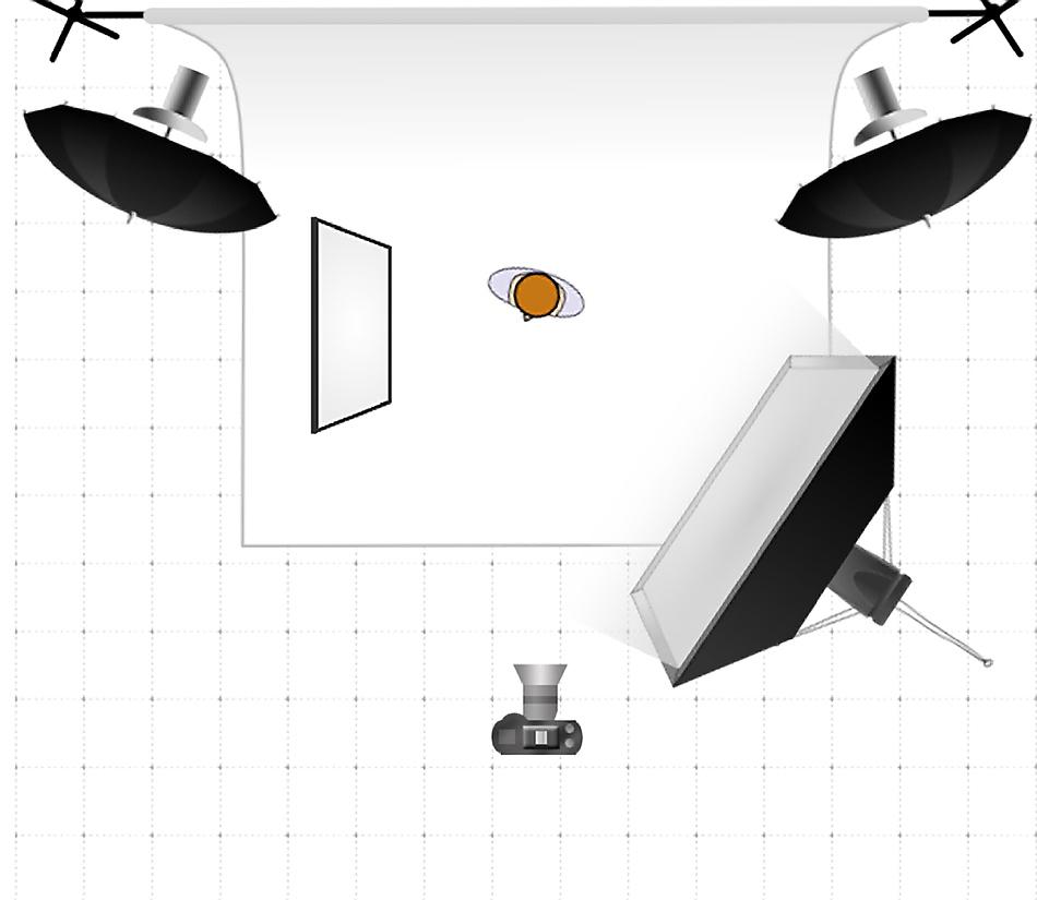executive portrait lighting diagram